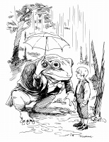 A frog and a boy